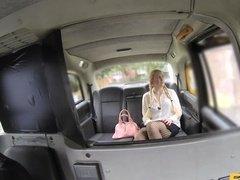 Блондинка с косичками неосознанно возбуждает водителя такси